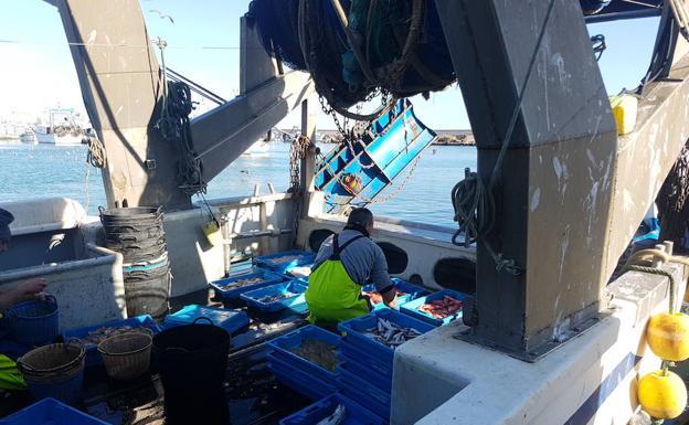 Un marinero de un barco de arrastre clasifica las capturas antes de desembarcar en la lonja. /Agustín Peláez
