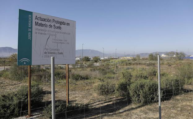La Vpo Un Bien Cada Vez Mas Codiciado En Malaga Diario Sur