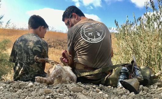 Una parada en la jornada de caza./Federación andaluza de caza