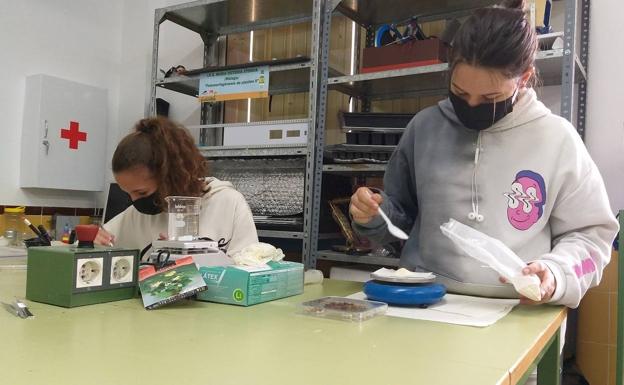 Noelia González Pons y Ana García Dueñas, de tercer curso de la ESO en el María Victoria Atencia, trabajan en su proyecto. /SUR