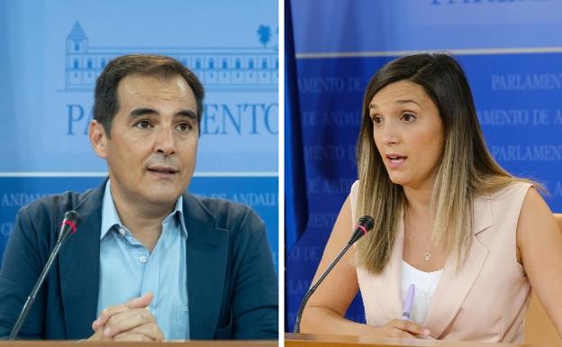 El portavoz del Partido Popular, José Antonio Nieto, y la vicepresidenta del PSOE, María Márquez / sur