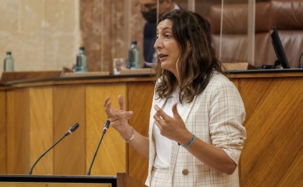 Loles López, durante su intervención en el pleno./sur