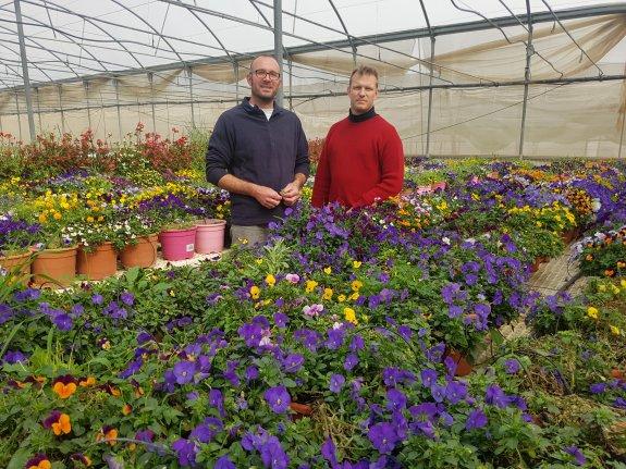 La Empresa Lider En Flores Comestibles Quiere Dar El Salto A Los